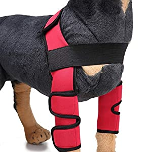 RC GearPro 1 Pair Pet Front Leg Braces Dog Leggings Joint Wrap Support for Surgical Injury and Sprain Protective Sheath… Click on image for further info.