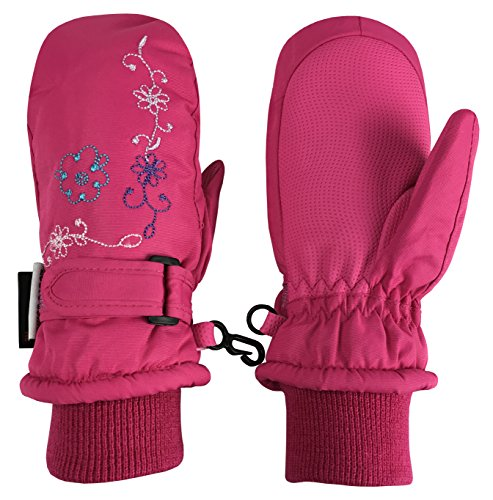 N'Ice Caps Girls Thinsulate and Waterproof Colorful Floral Embroidered Mittens (2-3yrs, (Embroidered Mittens)
