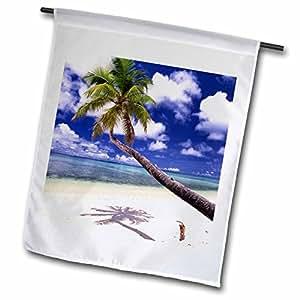 3dRose Océanos VWPics–un perro camina bajo un árbol de coco en la playa, Majuro Atoll, Islas Marshall–banderas