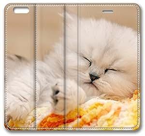 Sleeping Kitten 13682 iPhone 6 Plus Wallet Case, Apple iPhone 6 Plus (5.5