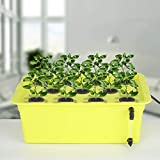GROWNEER 60 Packs 2 Inches Garden Clone Collars