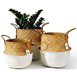 POTEY 730202 Seagrass Plant Basket Set of 3 - Hand