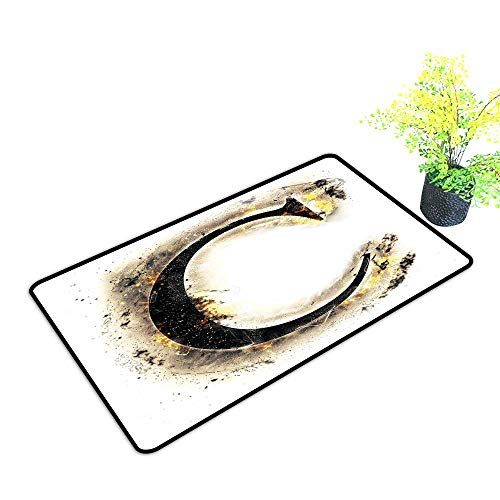 Diycon Washable Doormat Letter C Letter C Flaming Backdrop Combusted Alphabet Symbol Paper Effect Writing W20 xL31 Easy to Clean Tan Black Yellow