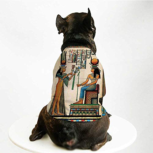 YOLIYANA Egyptian Decor Comfortable Pet Suit,Old Egyptian Papyrus Depicting Queen Nefertari with Historical Empire Artwork for Teddy Chihuahua Bichon,L]()