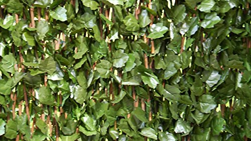 Verseo Faux Ivy Greenery Yard Decoration, Ivy Hedge Privacy Screen, Expandable 2-Pack