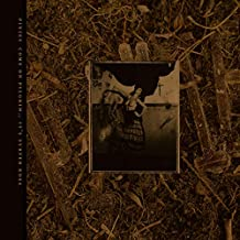Come On Pilgrim It's Surfer Rosa (Vinyl)