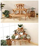 Hans&Alice Indoor 3-Tier Fir Wood Corner Standing Flower Pot Rack Step Style Plant Display Stand Shelf Storage Organizer, 3 Colors (Light Brown)