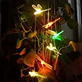 Dragonfly LED Solar Wind Chime Night Light, Color-Changing (Clear Dragonfly)