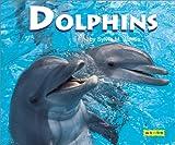 Dolphins, Sylvia M. James, 1590340108