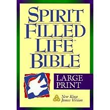 Holy Bible: Spirit Filled Life Bible, King James Version, Large Print, Burgundy Bonded Leather