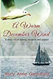 A Warm December Wind, Mary Anne Gonzalez, 1492330868