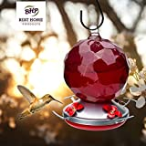 Best Home Products Hummingbird Feeder, Blown Glass, Candy Apple, 24 ounces
