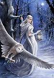 "«Midnight Messenger ""Anne Stokes Carte Magic Yule"