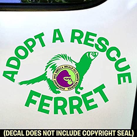 LOVE Word FERRET Vinyl Decal Sticker Crazy Ferrets Weasel Car Window Wall Sign