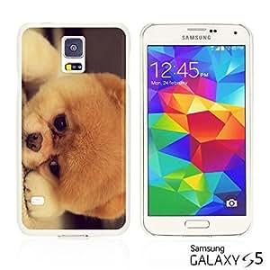OnlineBestDigital - Cartoon Pattern Hard Back Case for Samsung Galaxy S5 - Adorable Dog