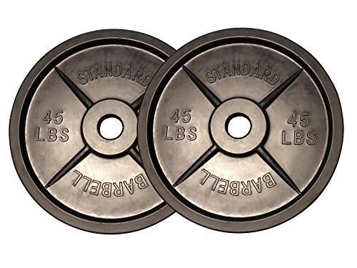 Fake Weights Barbell Pair by Fake Weights