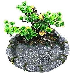 OMEM Reptile Feeding Bowl Food Water Dish Habitat Decor Terrarium Humidify Basin Water Bowl