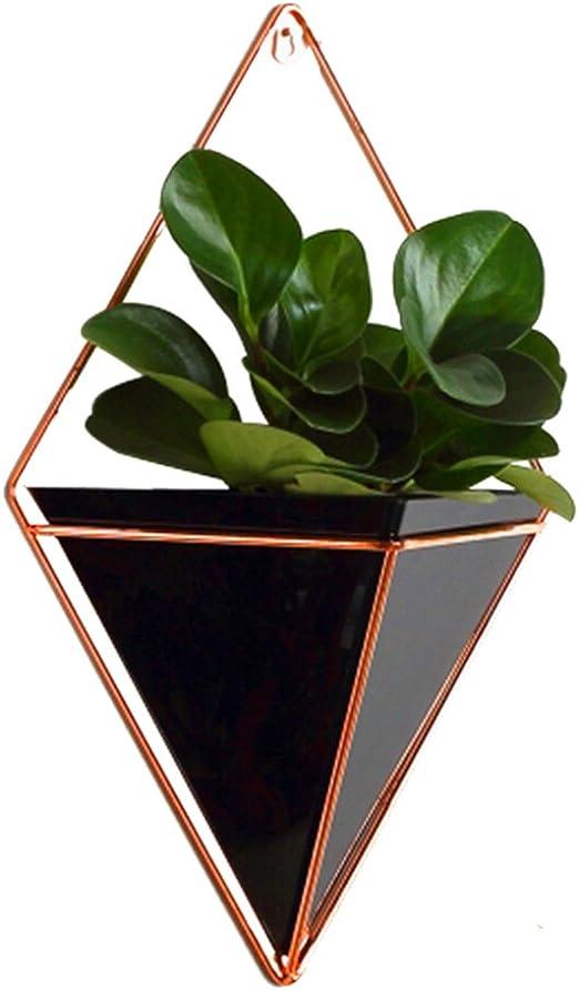 Macetero geométrico para colgar en pared, para jardines interiores, jarrón decorativo, perfecto para plantas suculentas, tillandsias, cactus pequeños o plantas artificiales, acrílico, negro, Large: Amazon.es: Jardín