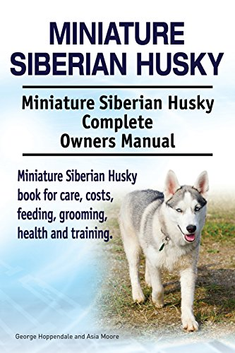 Miniature Siberian Husky Dog Miniature Siberian Husky Dog Book For