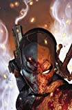 Image of Deathstroke Vol. 1: The Professional (Rebirth)
