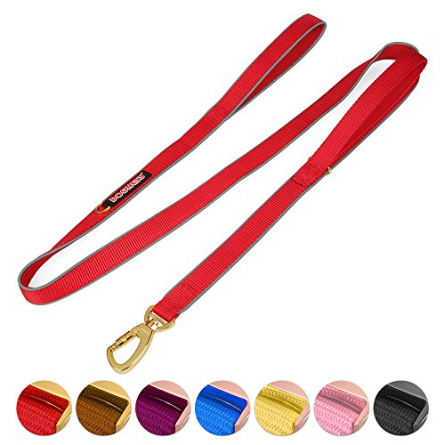DOGNESS Classic Double Handle Dog Leash, Dual Handle for Traffic Control, Heavy Duty Soft Padded Reflective Nylon, for Walking Training Small Medium Large Dogs, Matching Collar Harness Sold Separately