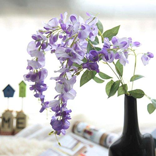 Wisteria Flowering Tree - 6