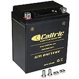 ranger 400 battery - CALTRIC AGM BATTERY Fits POLARIS RANGER 400 4X4 2010-2014