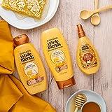 Garnier Whole Blends Honey Treasures Repairing