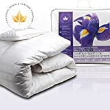 All Season Canadian Hutterite Goose Down Duvet