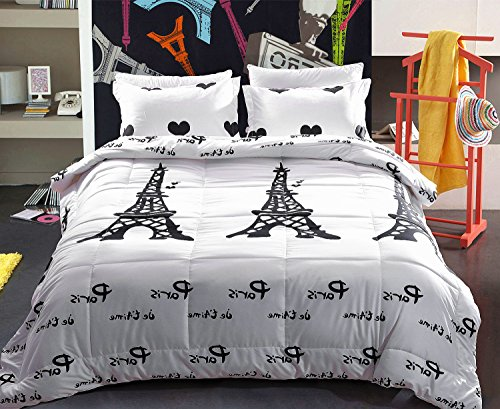 Juwenin bedding,Paris Night Eiffel Tower Scene All season Comforter Sets With 2 Matching Pillow Covers (Queen, BL)