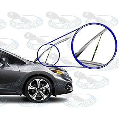 Two Front Hood Gas Charged Lift Supports for 1995-1999 Toyota Avalon. Left and Right Side. WGS-724-725: Automotive