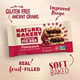 Nature's Bakery Gluten Free Fig