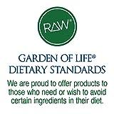 Garden-of-Life-Organic-Vegan-Protein-Powder-with-Vitamins-and-Probiotics-Raw-Organic-Plant-Based-Protein-Shake-Sugar-Free-Vanilla-220oz-1-lb-6-oz-624g-Powder