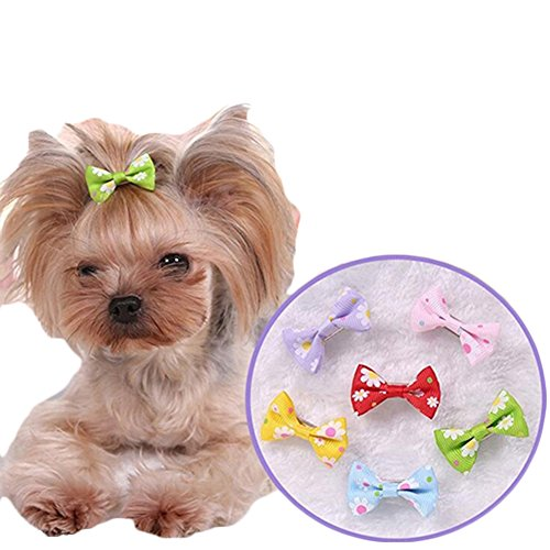 dog cat puppy hair clips