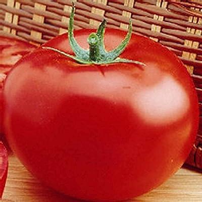 Tomato Garden Seeds - Delicious - Non-GMO, Heirloom, Vegetable Gardening Seed