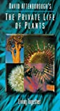 Private Life of Plants 5: Living Together [VHS]