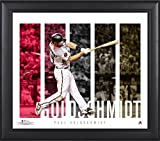 "Paul Goldschmidt Arizona Diamondbacks Framed 15"" x 17"" Player Panel Collage - MLB Player Plaques and Collages"