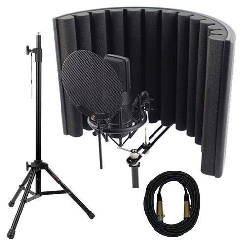 Cheap Multipurpose sE Electronics X1 S Complete Studio Bundle