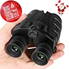 10x25 Binoculars, Folding High Powered Binoculars with Weak Light Night Vision Clear Bird