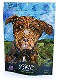 Gibson's Farmer's Bacon – Human Grade USA Soft Jerky Dog Treats, 3 oz For Sale