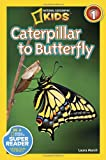 Caterpillar to Butterfly, Laura Marsh, 1426309201