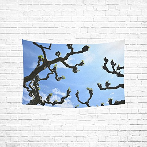 Curtain Cotton Hill (WUTMVING Tapestry Plane Tree Kahl Branches Crown Avenue Spring Sky Hippie Tapestries Wall Hanging Flower Tapestry Wall Hanging Dorm Decor For Living Room Bedroom 60 X 40 Inch)