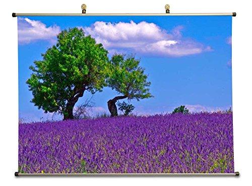 A field of lavander - Canvas Wall Scroll Poster (60x80 cm)