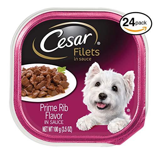 Cesar Gourmet Filets Wet Dog Food Prime Rib Flavor, (Pack Of 24) 3.5 Oz. Trays