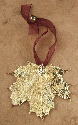 Curious Designs Maple Leaf Ornaments - Two Pieces, Sugar And/Or Full Moon Maple. Actual Leaves