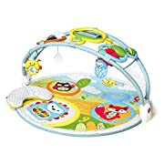 Explore & More Amazing Arch Baby Play Mat Activity Gym, 38  x 20 h, Multi Colored
