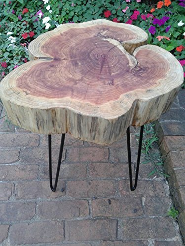 Thick Red Cedar Cookie Live Edge Table on black hairpin legs - Natural Beeswax Finish 12-14