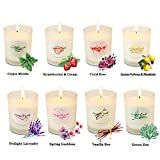 Y YUEGANG Scented Candles Gift Set for Women, Natural Soy Wax, 8 x 2.5 Oz Portable Glass Candles with Strongly Fragrance Essential Oils for Stress Relief and Aromatherapy - 8 Pack
