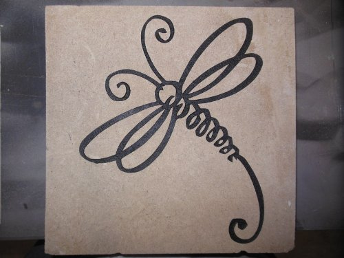 Stepping Stone Curly Dragonfly