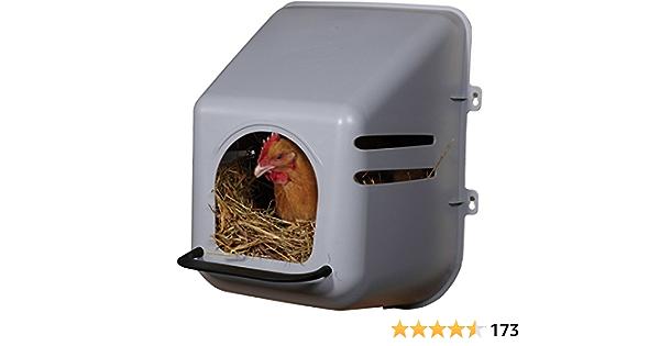 TRX - Nido de gallina, nido bruto.